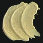 R161 Y161 Yellow iridescent