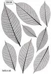 D118S Skeleton leaves – Shiny Platinum