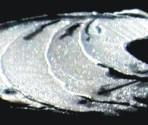 R183 Y183 Ultra Silver Metallic 15g