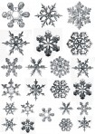 D112R Realistic Snowflakes – raised