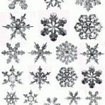 D112S Realistic snowflakes (A4) – shiny platinum