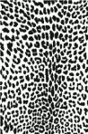 D120.1MB Leopard print (A4) – Matt Black