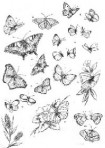 D90.3SS Soft line drawings – butterflies – satin silver