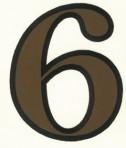 D29.1-6 No. 6 42mm – sepia/black outline