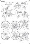 D90.2 Soft line drawings (A4) – birds