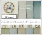 L39 Silver grey