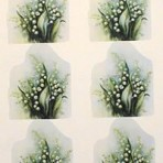 PH210 6 Lily-of-the-valley – A4