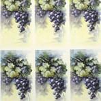 PH220 Grapes – A4
