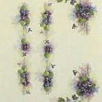 PHH231A Violets