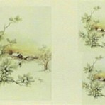 PHH245 Snowberries and winter scene
