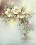 SA17 Pink wild roses
