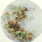 SA32 Yellow raspberries